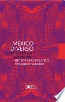 libro México Diverso