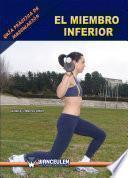 libro Guía Práctica De Musculación: El Miembro Inferior