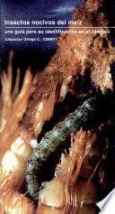 Insectos Nocivos Del Maíz