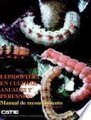 Lepidoptera: En Cultivos Anuales Y Perennes: Manual De Reconocimiento