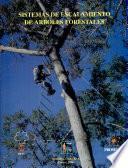 Sistemas De Escalamiento De árboles Forestales