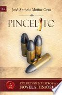 libro Pincelito