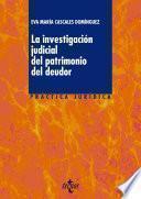 La Investigación Judicial Del Patrimonio Del Deudor