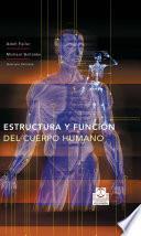 Estructura Y FunciÓn Del Cuerpo Humano (color)