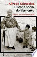 libro Historia Social Del Flamenco