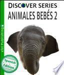 Animales Bebés 2