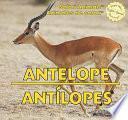 libro Antelope / Antílopes