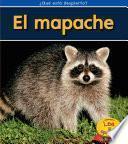 El Mapache