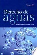 Derecho De Aguas. Tomo Vi