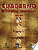 Irapuato Guanajuato. Cuaderno Estadístico Municipal 2001