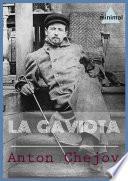 La Gaviota