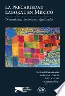 libro La Precariedad Laboral En México. Dimensiones, Dinámicas Y Significados.