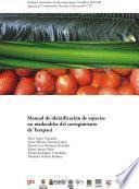 Manual De Identificación De Especies No Maderables Del Corregimiento De Tarapacá.