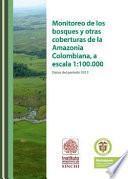 Monitoreo De Los Bosques Y Otras Coberturas De La Amazonia Colombiana. Datos Del Año 2012.