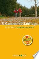 El Camino De Santiago. Etapa 30. De Pedrouzo A Santiago De Compostela